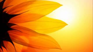 Assisting In Your Own Healing By Louise Hay