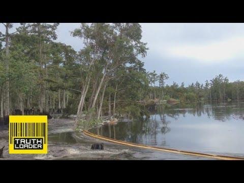 Giant Sinkhole Eats Trees for Breakfast!