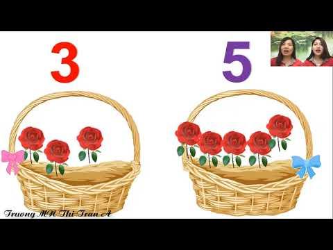 Hoạt động làm quen với Toán: Bài Chia 8 đối tượng ra làm 2 phần bằng các cách khác nhau