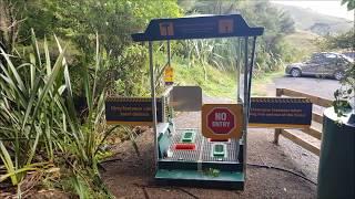 Kauri Loop Track Hakarimata