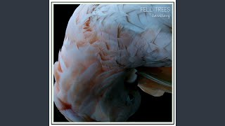 Fell Trees - I Am a Liar