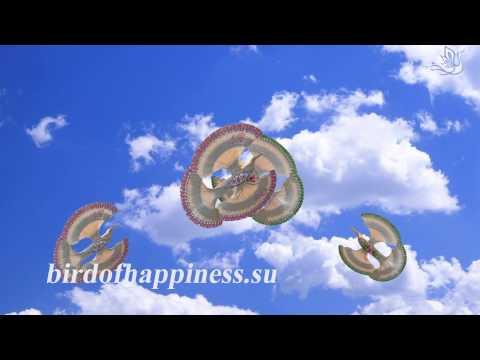 Сколько стоит счастье смотреть онлайн в hd 720