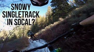 Snowy Singletrack in SoCal? Mount Pinos Speed Run