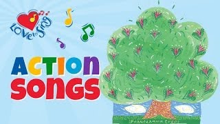 Pohutukawa Tree | A New Zealand Christmas Song | Children Love to Sing