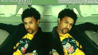 Shaggy - Why Me Lord !
