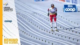 Therese Johaug | FIS Cross Country