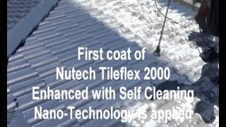 Nutech Paint Tile Roof Restoration.avi