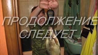 Рыбалка отчет сенеж