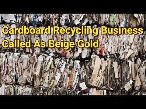 , title : 'In the coming few years cardboard recycling business will be crossed Billion Dollar |