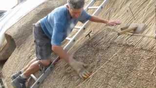 Norfolk Reed Thatching