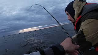 Рыболовная база на финском заливе