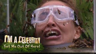 Ferne, Spencer and Vicky Face Terrifying Bushtucker Trial | I
