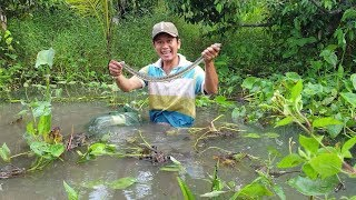 Lóc bự , bống dừa , ri cá và lươn. Thăm câu sáng dính đủ loại | Săn bắt SÓC TRĂNG |