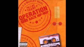 Craig G & Marley Marl-The Day Music Died