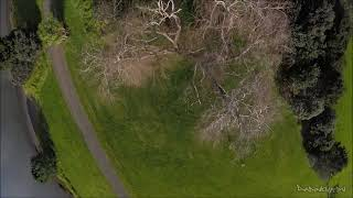 FPV Meet up with Flying kiwi