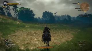 The Witcher 3 : Wild Hunt - How To Obtain Cockatrice Stomachs For Alchemy.