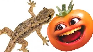 Tomat Lebay - Cicak Jorok !