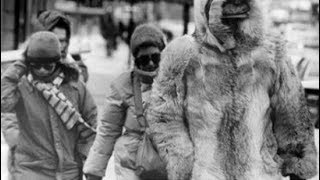 Coldest Ever in USA continues New Records and Forecasts (783)