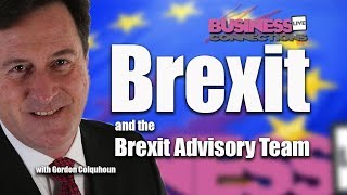 Brexit and the Brexit Advisory Team