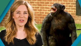 Why can't Animals Talk? | Earth Unplugged