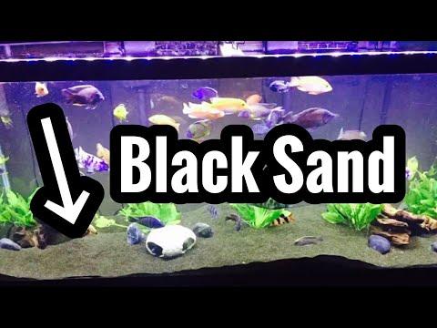 Best Black Sand for Fish Aquarium? Gallery