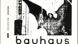 BAUHAUS-BOYS