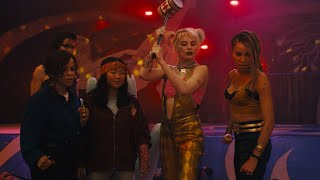 Birds of Prey (2D)