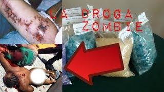 10 efectos que causan las sales de baño [la droga zombie]*informativo*