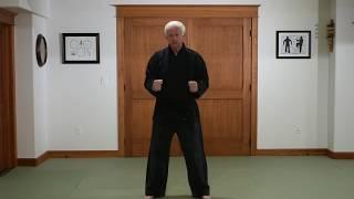 Tensoku Ryu Salutations
