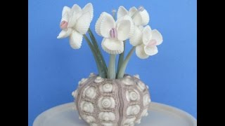 Поделки из ракушек, красивые цветы