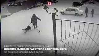 Смотреть онлайн Сотрудник колонии застрели коллегу и покончил с собой