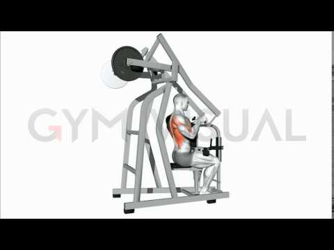 Lever Incline Rear Delt Row (plate loaded)