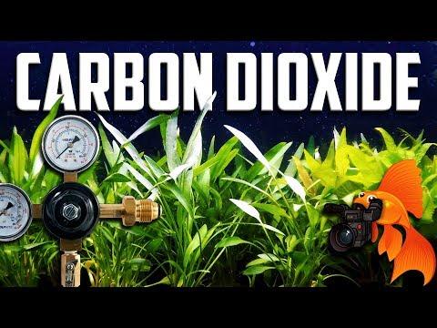 AQUARIUM CO2 GUIDE