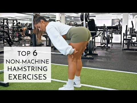 mp4 Exercises Hamstrings, download Exercises Hamstrings video klip Exercises Hamstrings