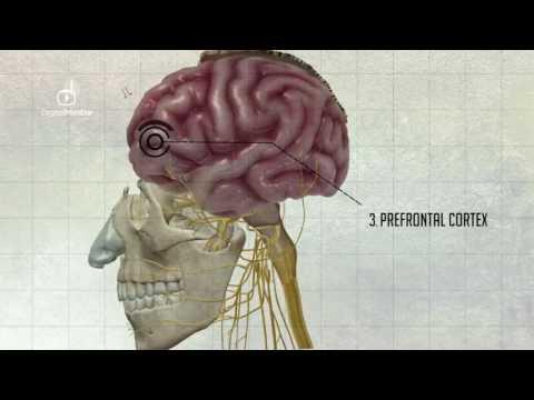 Kaip veikia spinduliuotės prostatos vėžio
