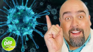 How to Disinfect: The Difference Between Sanitizing and Disinfecting [2021]