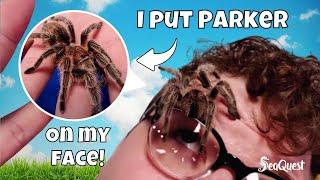 Virtual Field Trip Episode 7