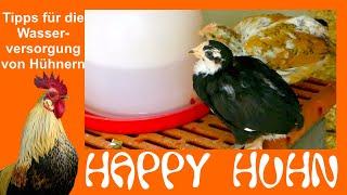 E175 Tipps für die optimale Wasserversorgung der Hühner - HAPPY HUHN - Tränken und Wasserspender