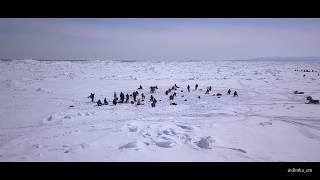 Зимняя рыбалка на Сахалине. 23 марта 2018. Долинский район, 72 км. Видео с дрона