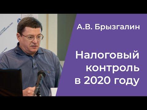 А. В. Брызгалин. Налоговый контроль в 2020 году