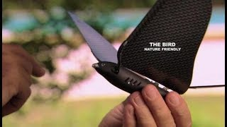В Китае появились дроны в форме птиц