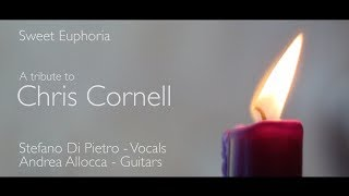 Chris Cornell - Sweet Euphoria (A tribute to Chris Cornell)