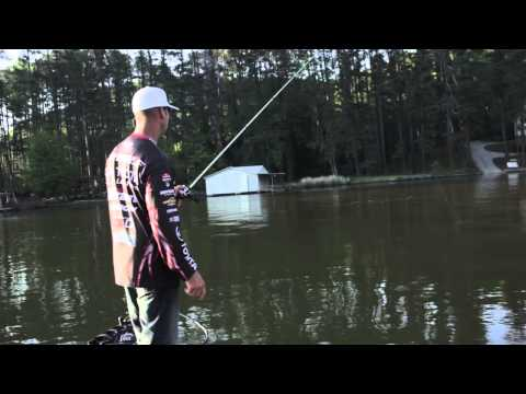 How to Sight Fish for Bass