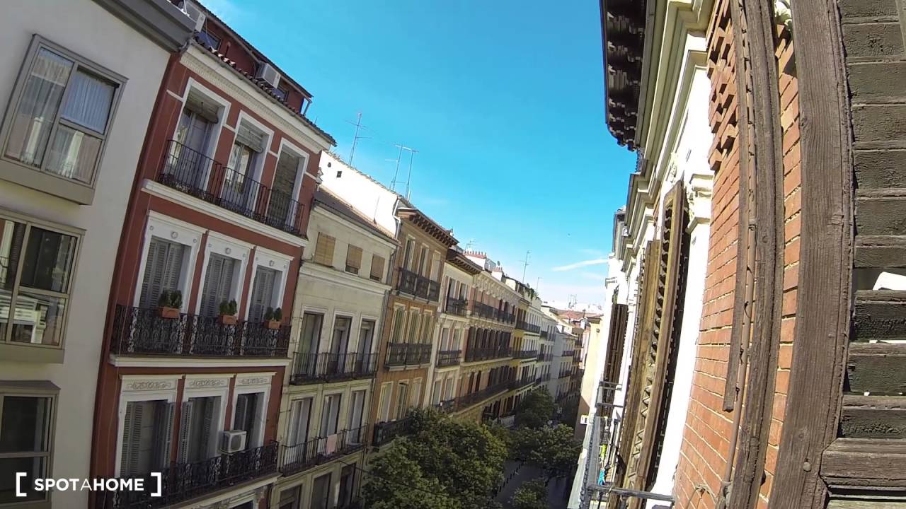 Modern 1-bedroom apartment with 3 balconies for rent in Malasaña