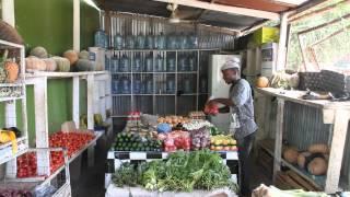 Simple Innovations Revolutionize Farming in Zanzibar