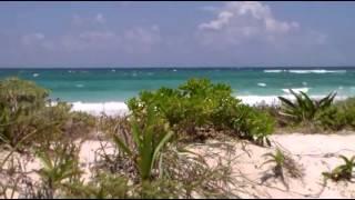 Смотреть онлайн Пляжи Ривьера Майя, обзор Xcacel beach