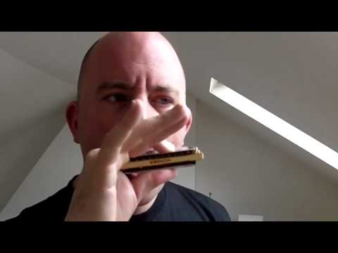 Hohner Thunderbird  Review (Low tuned Harmonica)