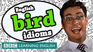A little bird told him you want to learn idioms