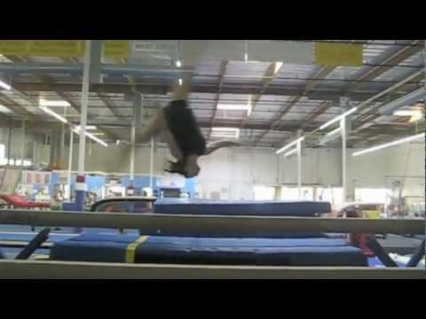 One gymnastics journey