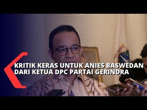 Ketua DPC Gerindra Ali Lubis Minta Anies Mundur